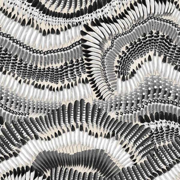 Christian Lacroix Design Tapete Prete moi ta plume Jais I Federn schwarz/weiß/beige PCL7033/03
